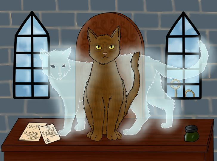 Mrs. Norris is the cat of Argus Filch, the caretaker of Hogwarts School in Harry Potter.