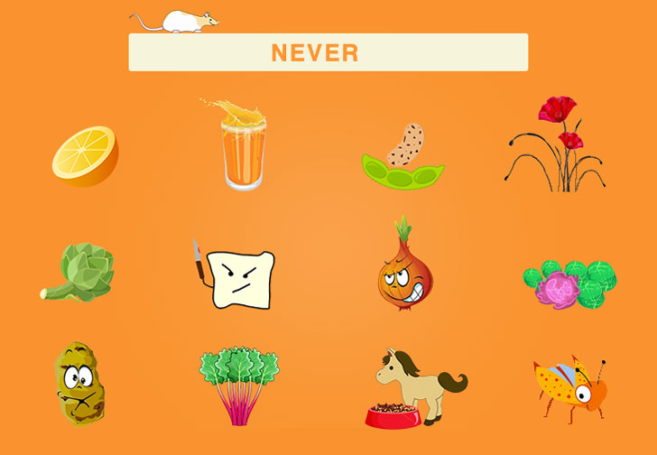 a picture to help you recall the second group of foods that appeared above