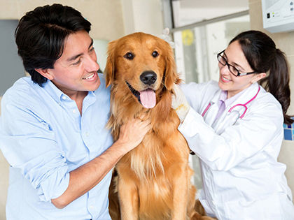 pet-insurance-love-him-more-while-paying-less