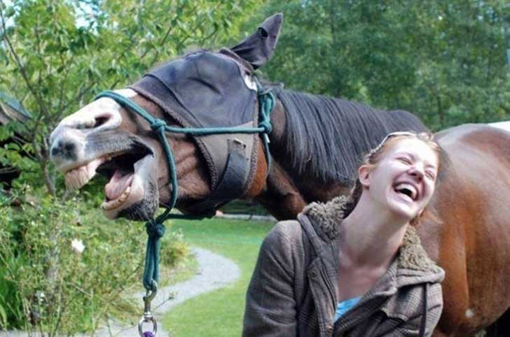 15-animal-photobombs-that-couldnt-have-been-timed-better_6