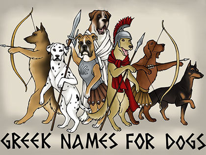 10 Male Dog Names From Interesting Greek God Stories