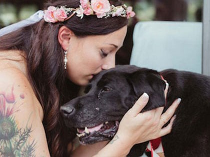 Bride's Dying Dog Held On In His Final Days For One Last Gift